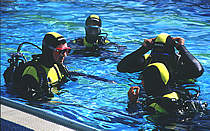 Basic Diving Training